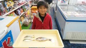 神戸港周辺 そうちゃんのサビキ釣果!