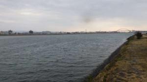 「春一番」?暖かいですが、爆風!17日紀ノ川RT