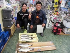 紀ノ川河口・投げ釣りでの釣果です!!