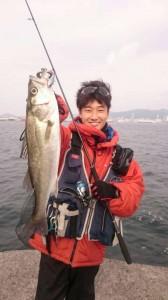 本日もシーバス好調!!! 3/14(火)神戸沖堤防釣果情報