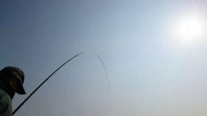 泉大津から貝塚 エビ撒き釣りが面白い!