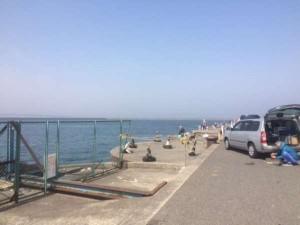 食コンリアル 今朝もエビ撒き釣りで60cmオーバー