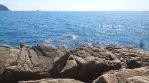 【岩元渡船】 すさみ 沖磯 赤島にグレ釣りに行って参りました!