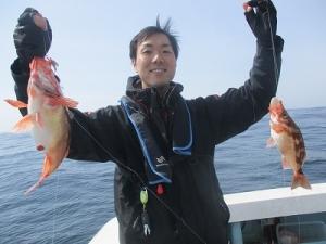 【絶品】日本海の沖メバル!外道も嬉しい♪