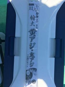 菊川渡船!鬼アジ釣り!