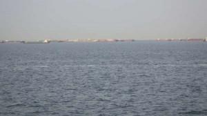 鳴尾浜・今日もシーバス釣れてます。