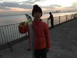 【真っ盛り!?太刀魚】南芦屋浜ベランダ