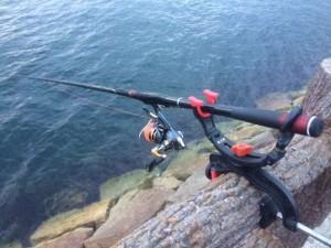 まだまだフカセ釣りのチヌ釣れています。