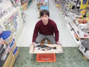 紀ノ川河口でのチヌ釣果!!