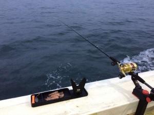 加太沖でアジがまだまだ釣れている様子です!(^^)!