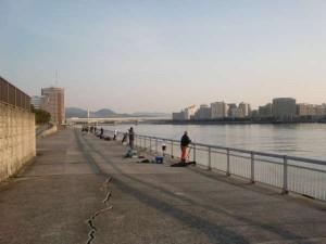 【絶好の釣り日和(*^▽^*)】南芦屋浜リアルタイム