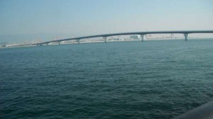 神戸空港エビ撒き釣りでメバル!