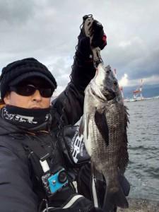 岸黒ゲームで良型クロダイ♪ 3/3(金)神戸沖堤防釣果情報