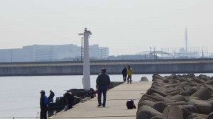 丸島防波堤 チヌ51cm釣れました。