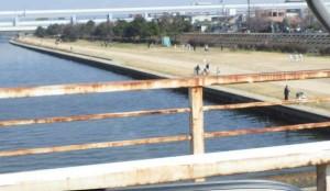 河川敷のぶっこみはハネが増えてきましたよ