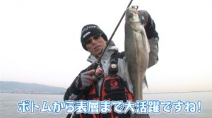 #四季の釣り#メジャークラフト#神戸沖堤防シーバス