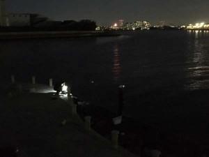エビ撒き釣りも好調です♪南芦屋浜