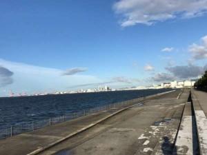 『西風強風!東面へGO!』南芦屋浜釣果情報