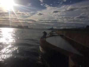 堺「セル石」へフカセチヌ釣行