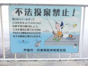夕方のサビキ釣りは大漁~♪南芦屋浜