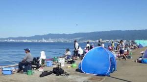 鳴尾浜公園 ツバスとハネとサバだ