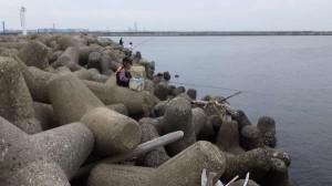 丸島 フカセでキビレの釣果あり