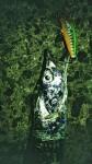 20170814太刀魚