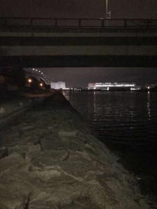 芦屋浜水道 小サヨリパターンシーバス狙いが・・・ ビック・・・が!