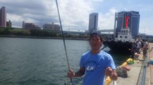 汐見埠頭【なぎさ公園】アジとイワシが釣れています♪