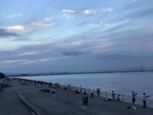 『今日のタチウオ東寄りでした!Σ(× ×;)!』南芦屋浜釣果情報