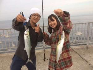 貝塚リアル 女性アングラーがサゴシ!!