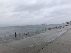 雨でもタチウオ・サゴシがいいね♪南芦屋浜RT