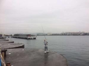 貝塚プール&食コンリアル 雨ですが青物・タチウオ