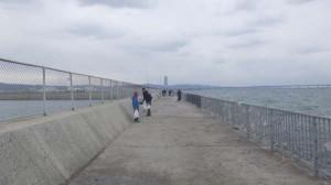 貝塚人工島リアル