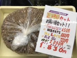紀ノ川の「銀ピカ」!川フカセが面白い♪9日RT
