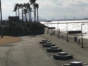 超リアル     鳴尾浜公園