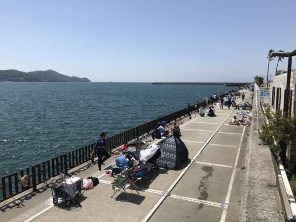シティ 和歌山 釣り マリーナ
